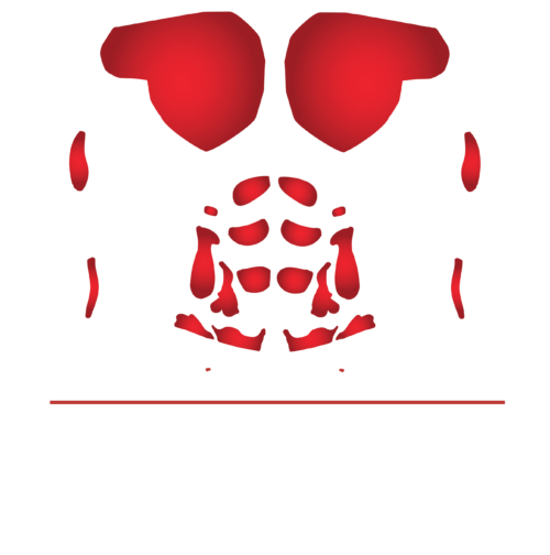 Habs Body Training